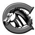 CreekviewMustang